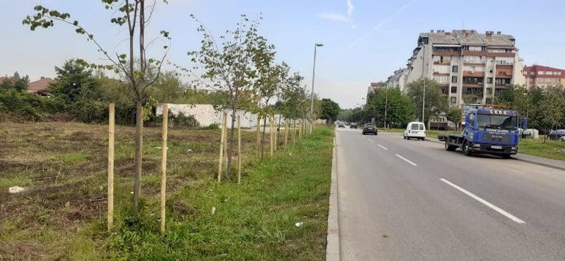 Općina Lukavac obogaćen je sa preko 500 novih sadnica